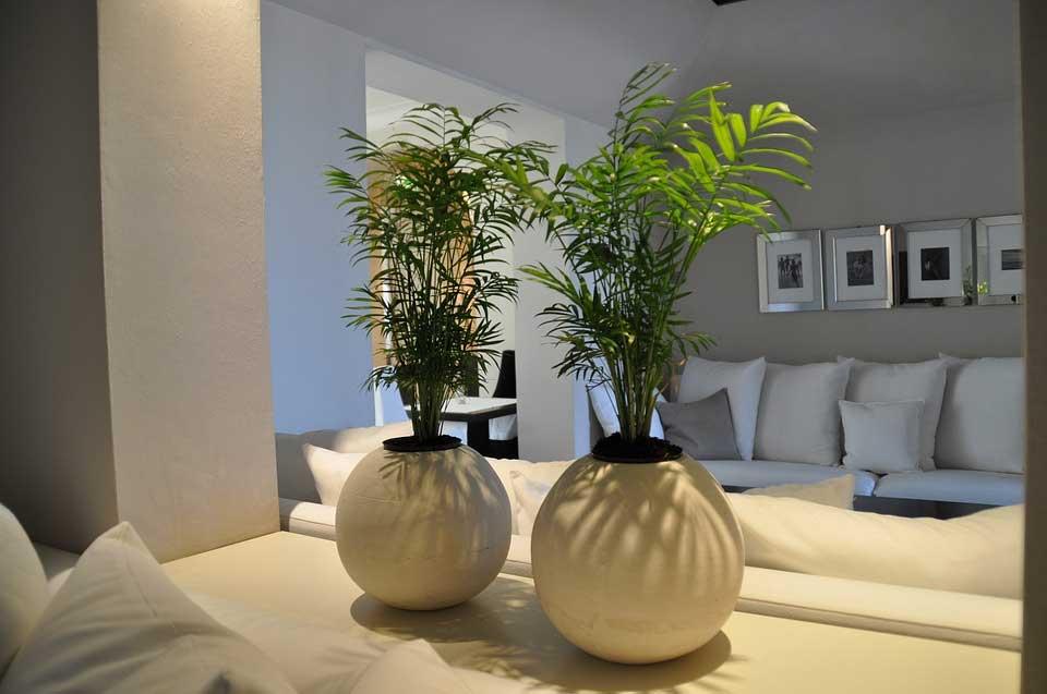 consultoria-hoteles-pqliar-consulting-santiago-compostela